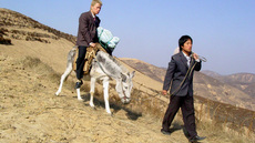 Image of Half Hitching Post by Yang Fudong, A Movies 2005