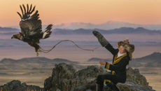 Image of 470x264-EagleHuntress